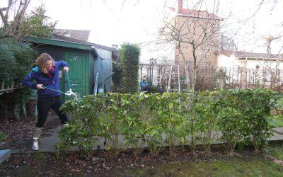 S'occuper de son jardin avec le plus grand soin