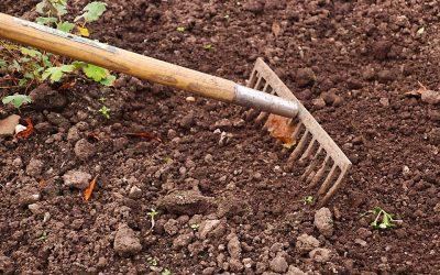 Apprendre à utiliser une motobineuse pour le sol du jardin